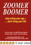 ZOOMER BOOMER 2009 - Youthn Book Series volume 4